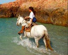 лошади-и-конный-спорт